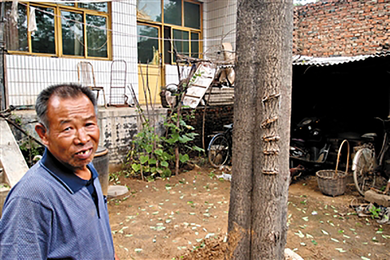 A father showing the wounds on a tree his son inflicted with a knife during a psychotic episode. Since then he has confined his son at home. Photo by Beijing News. http://health.sohu.com/20130711/n381262203.shtml.