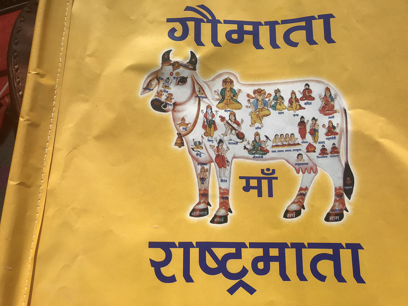 """A yellow paper flag with an image of a cow with Hindu deities in her body and text that reads """"Gau-Mata Rashtra-Mata."""" Photo by Radhika Govindrajan."""