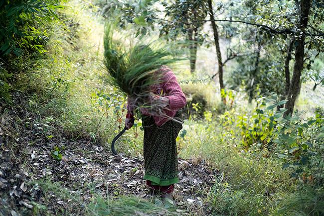 The grueling labor involved in raising livestock falls entirely upon women. Photos by Radhika Govindrajan.