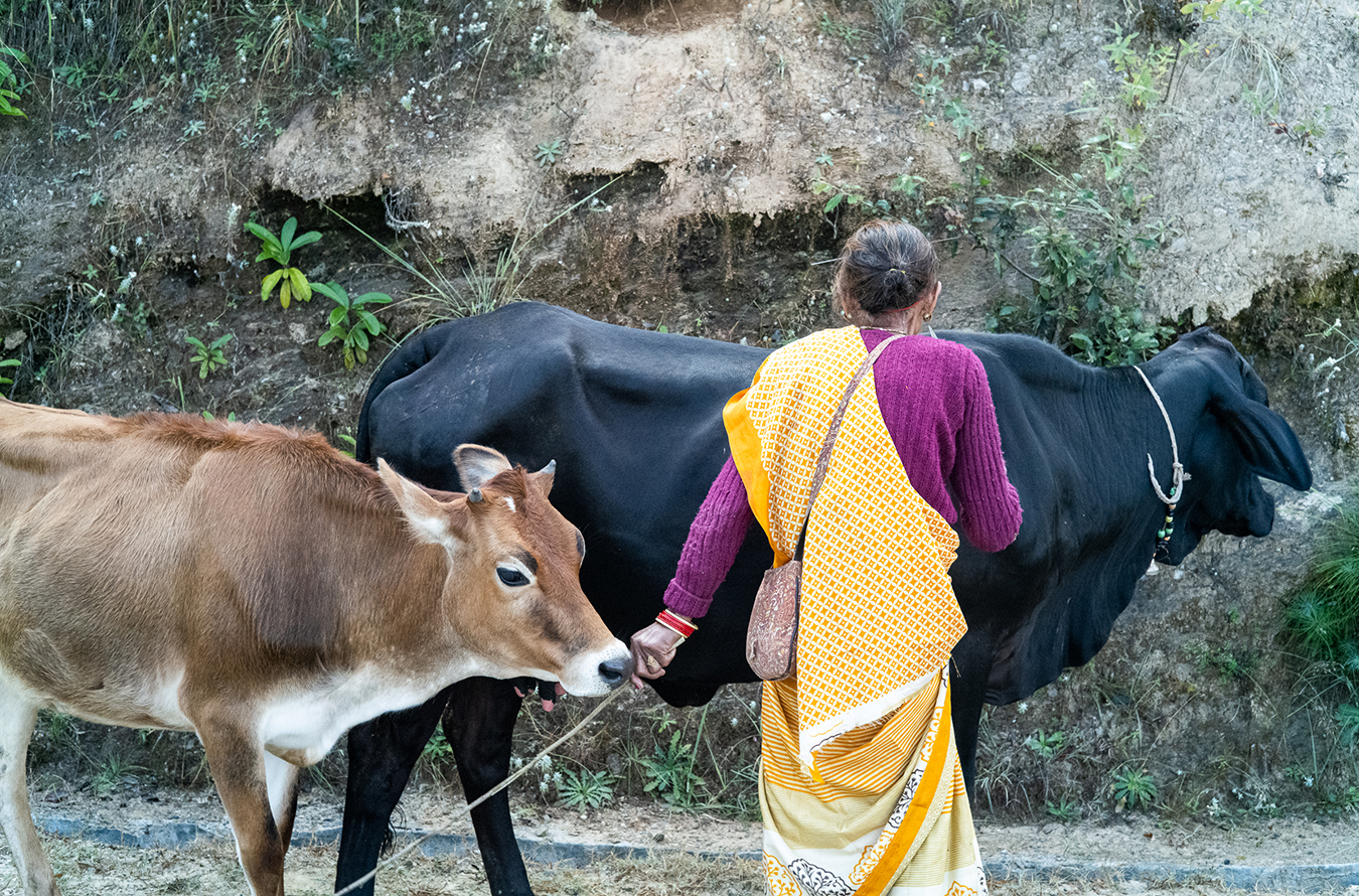Embodied, intersubjective labor is the basis of moh-maya. Photo by Radhika Govindrajan.